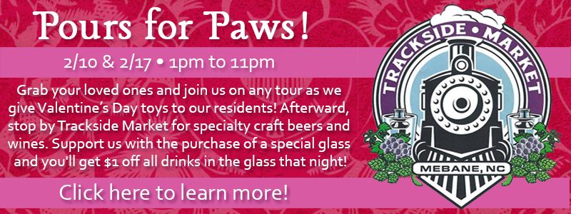 poursforpawsBanner